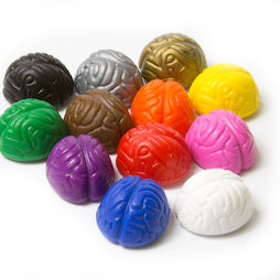 LIV-110, Crazy Brain, Koelkastmagneten in hersenvorm, kleurig geassorteerd, set van 12